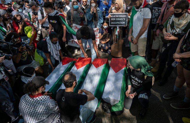 Pro-Palestinian protest in Washington DC