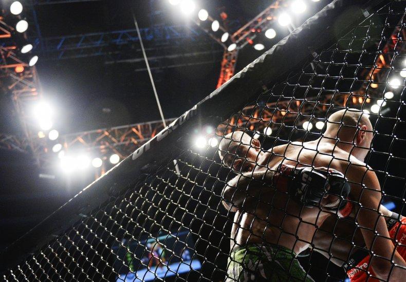 UFC fight in Stockholm, Sweden