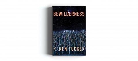 CUL_Summer Books_Fiction_Bewilderness