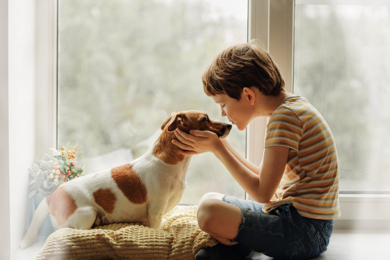dog and young boy