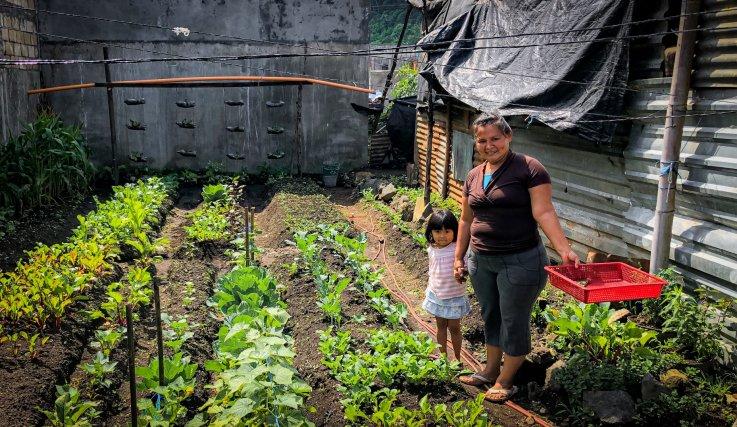 World Neighbors local farmers