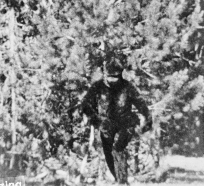 Bounty created in Oklahoma to find Bigfoot