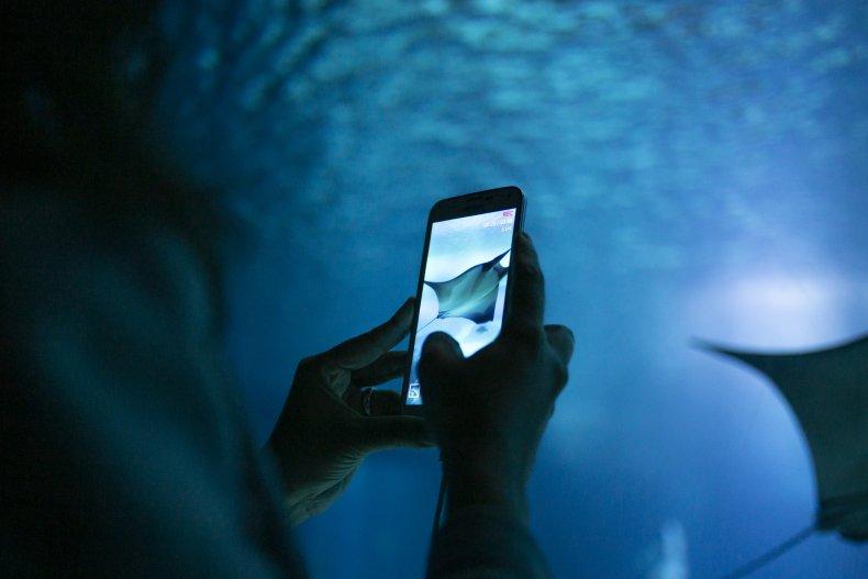 Visitor takes photo at aquarium