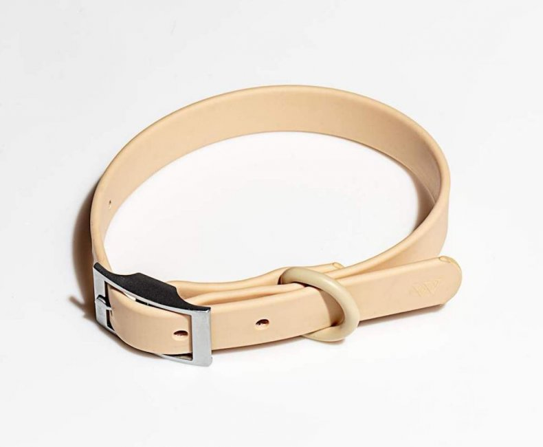 best dog collars for puppies wild one