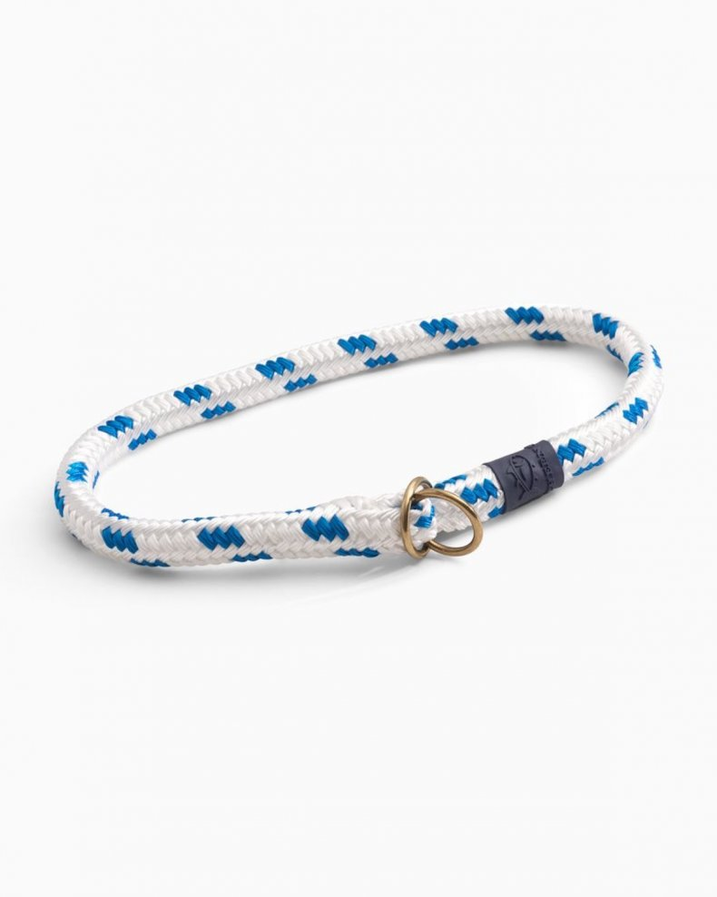 best dog collars for puppies southern tide