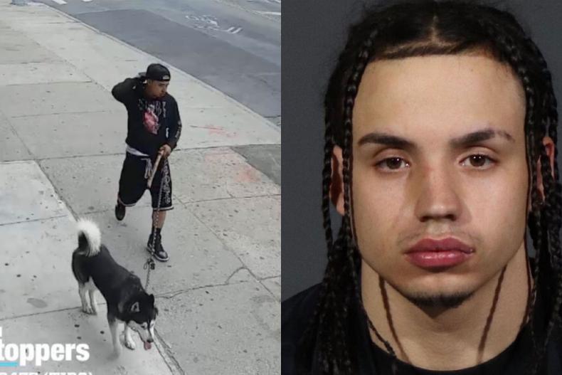 child predator NYPD
