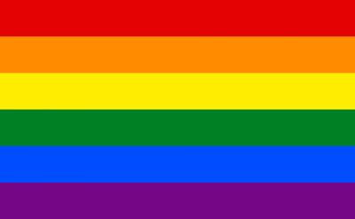 The rainbow pride flag.