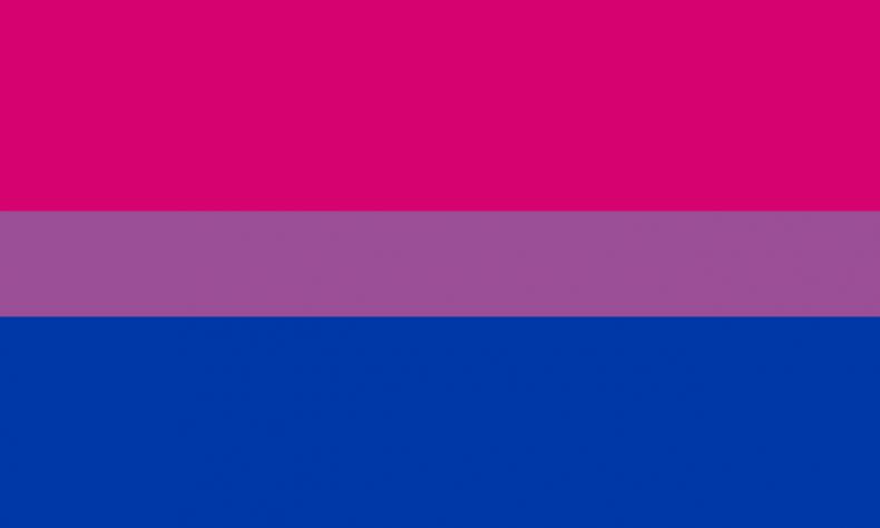 The bisexual pride flag.