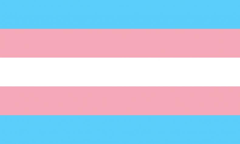 The transgender pride flag.