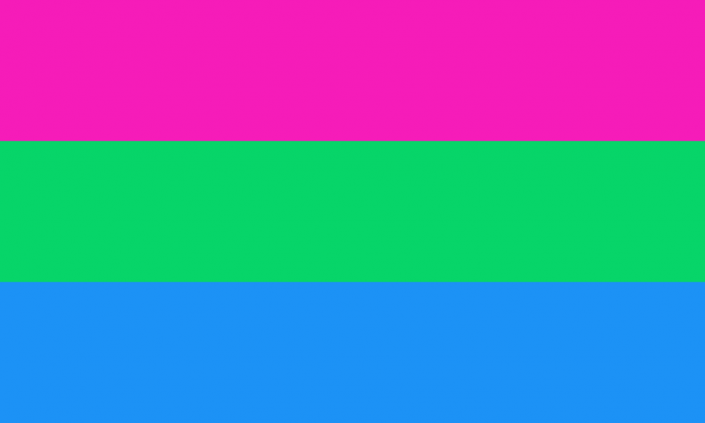 The polysexual pride flag.