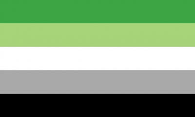 The aromantic pride flag.