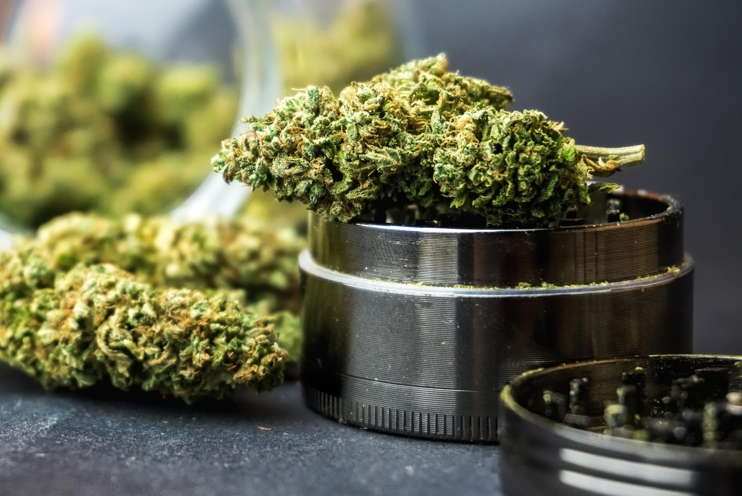 Washington State to give marijuana with vaccines