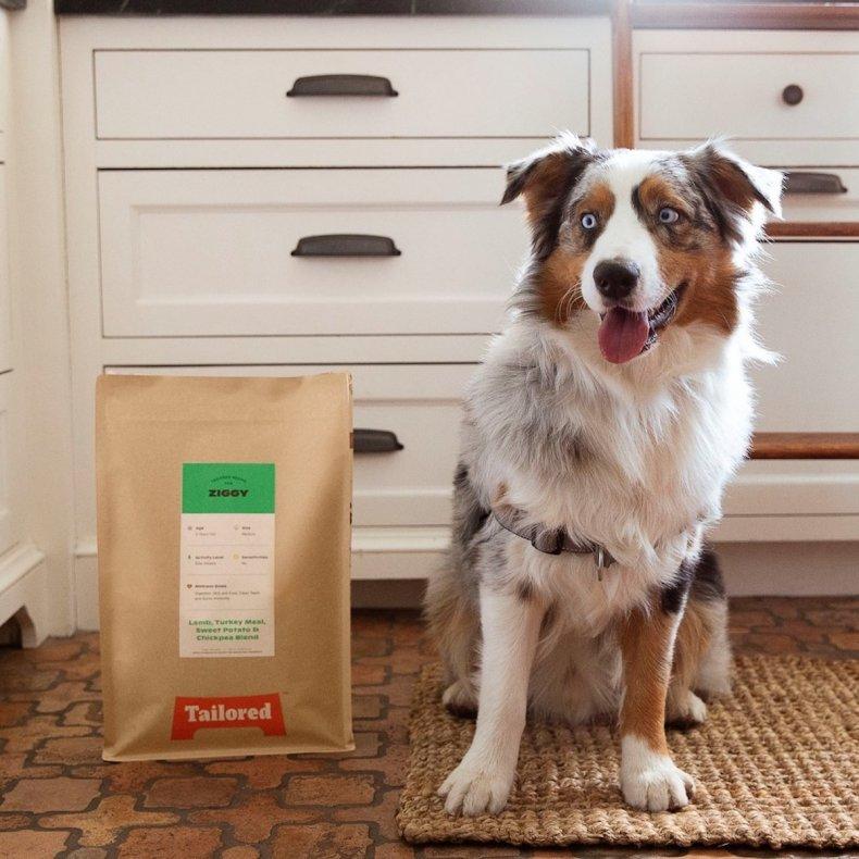 best senior dog food tailored