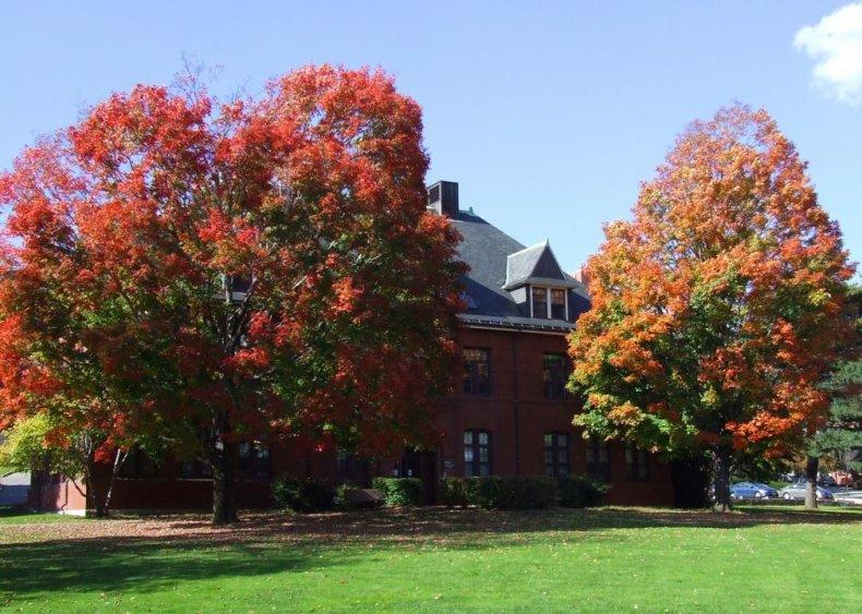 #55. Tufts University