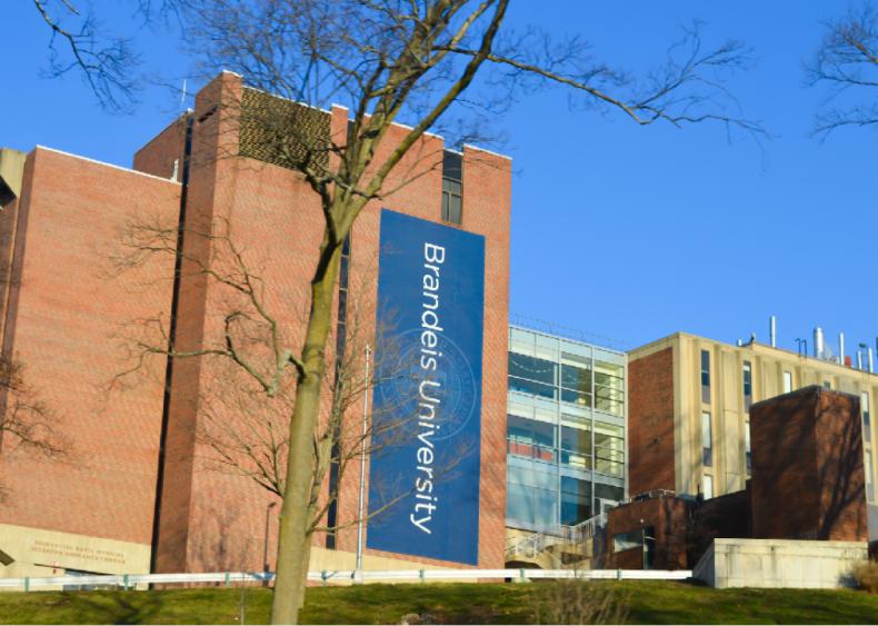 #46. Brandeis University