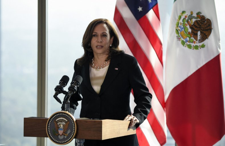 Kamala Harris Speaks During a Press Conference
