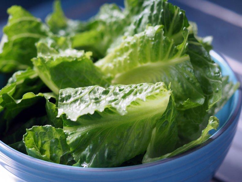 Chopped romaine lettuce leaves