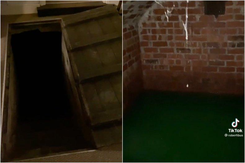Man finds 'swamp' under house