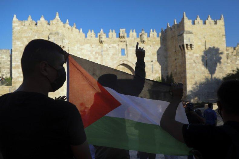 Democrats Support Palestinians