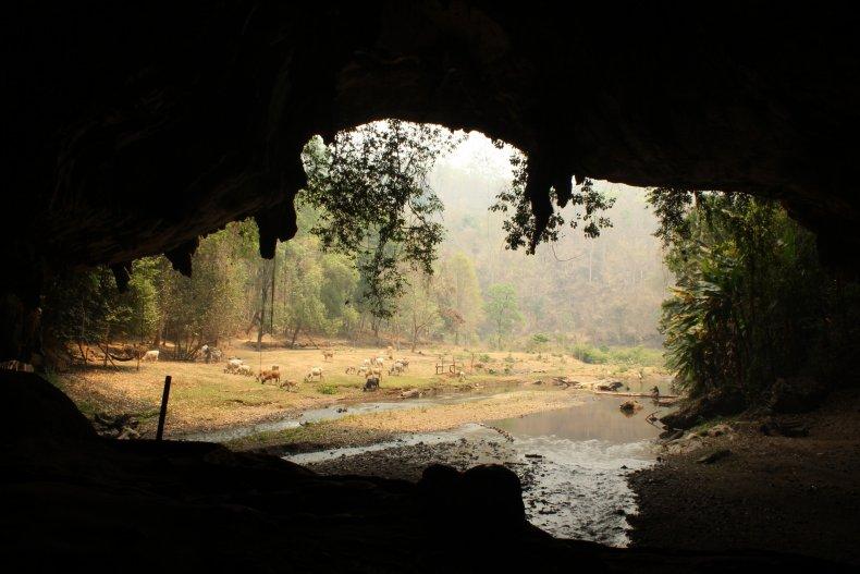 Dark interior of a large cave