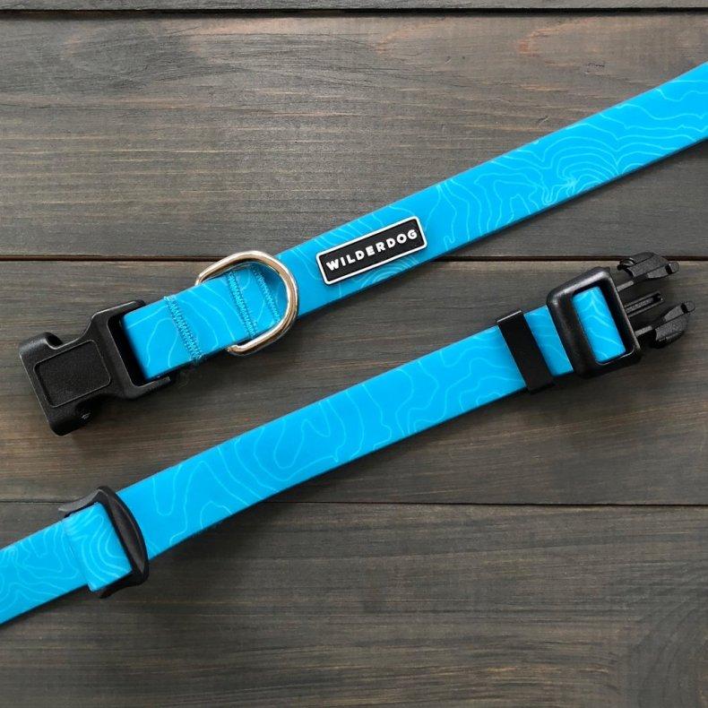 Newsweek Summer Picks - waterproof dog collar