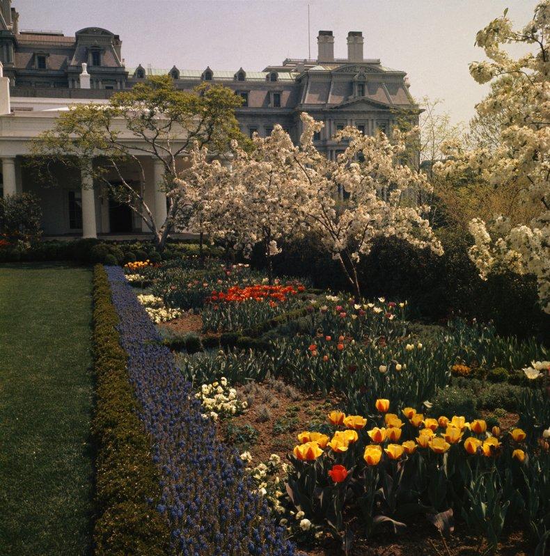 The White House Rose Garden in 1963.