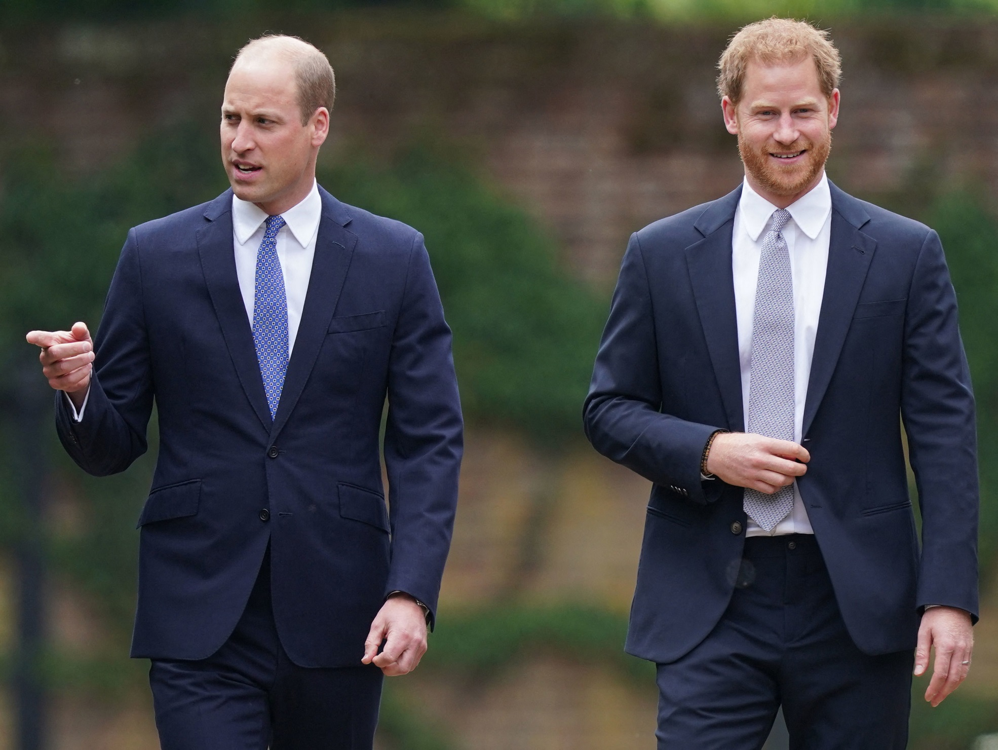 Prince Harry, Prince William at Statue Unveiling