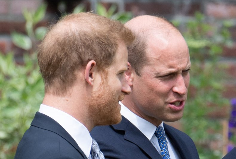 Prince William and Harry Unveil Diana Statue