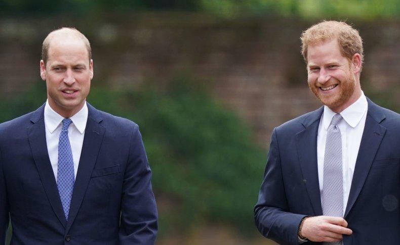 Prince William, Harry Unveil Diana Statue