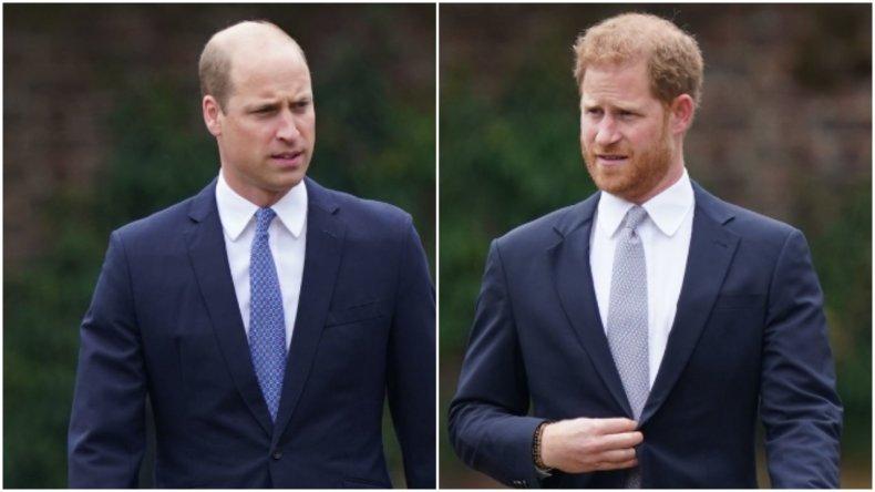 Princes William and Harry reunite