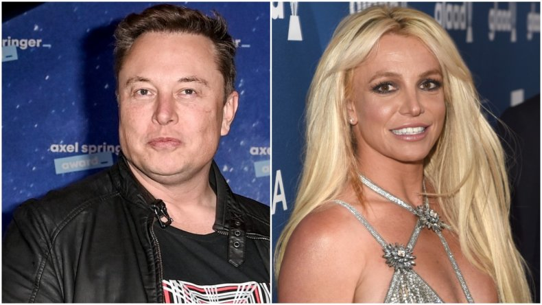 Elon Musk supports Britney Spears