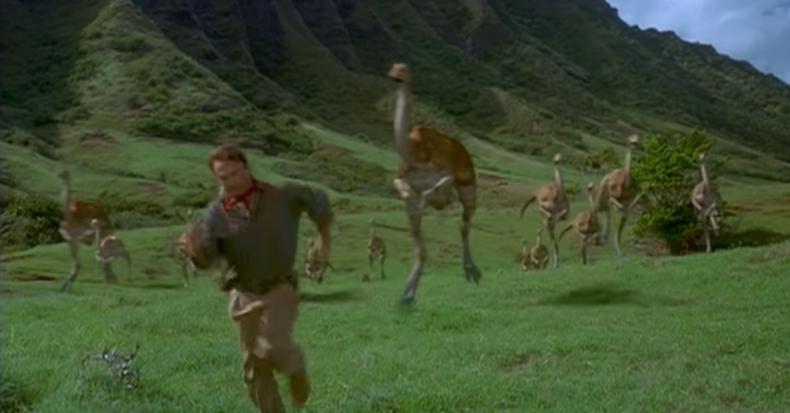Scene from 1993 film Jurassic Park