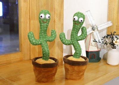 Singing Cactus Toy Raps About Cocaine
