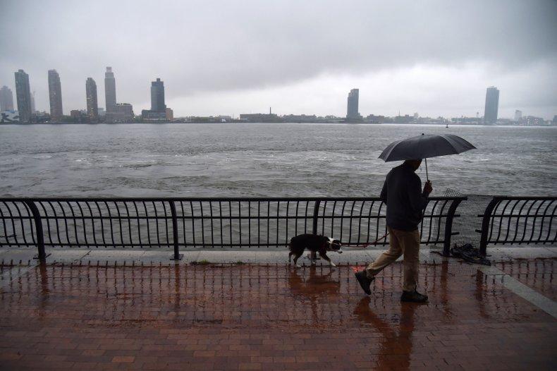 Man Walks Dog in NYC