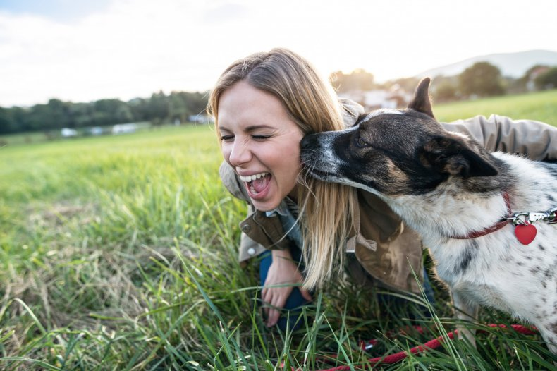 A dog licking a woman's face.