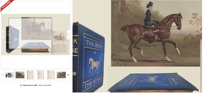 The Book of the Horse by S.Sidney
