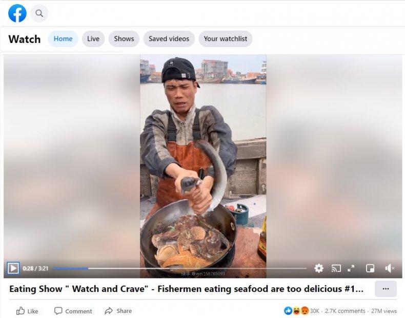 Mukbang Chinese fisherman Haitou Hantou eel video