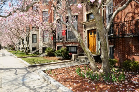 PLUS: Boston University
