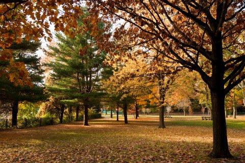 PLUS: Boston College