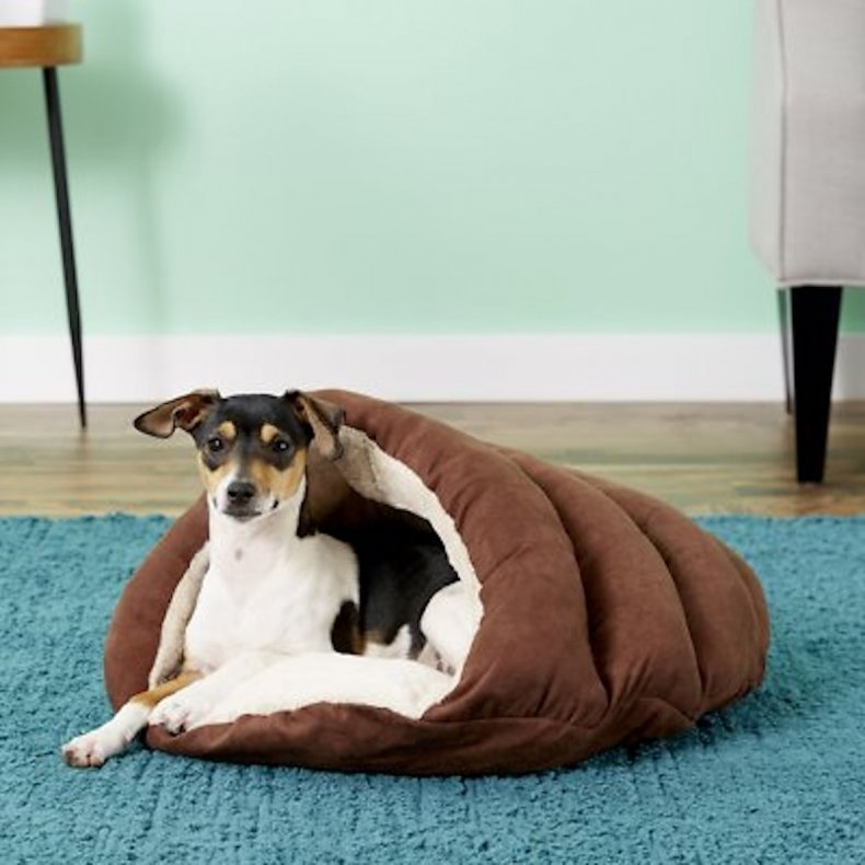 best pet products cuddle cave