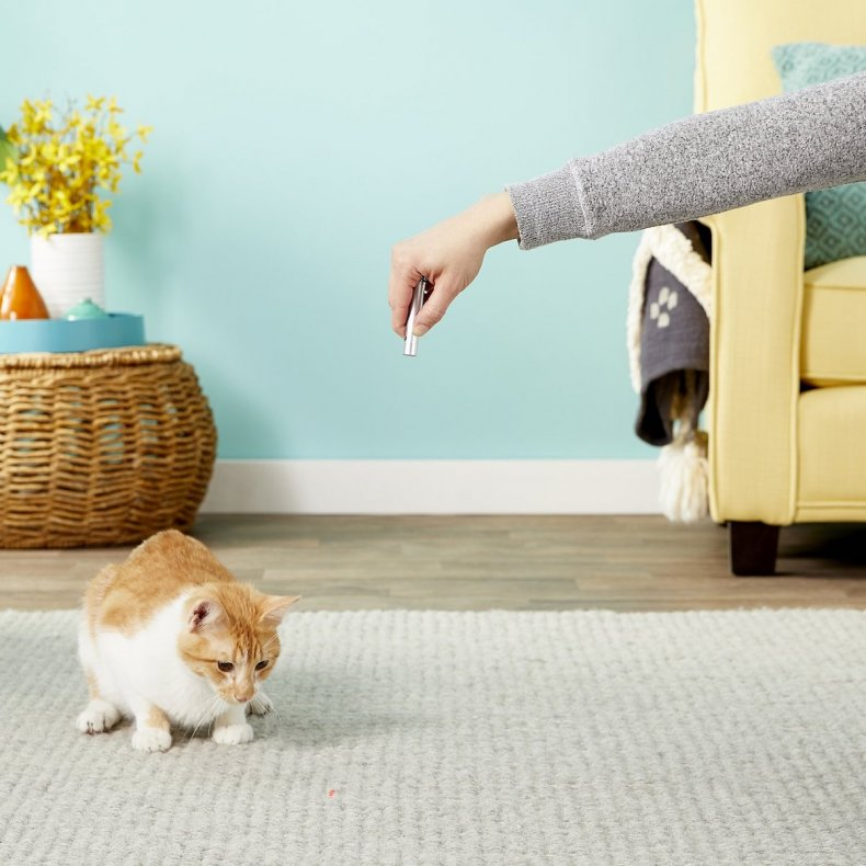 best pet products cat laser