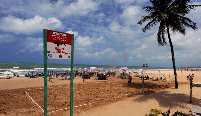 Shark Attack Warning in Brazil