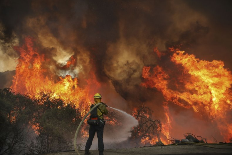 Firefighters fight brush fire