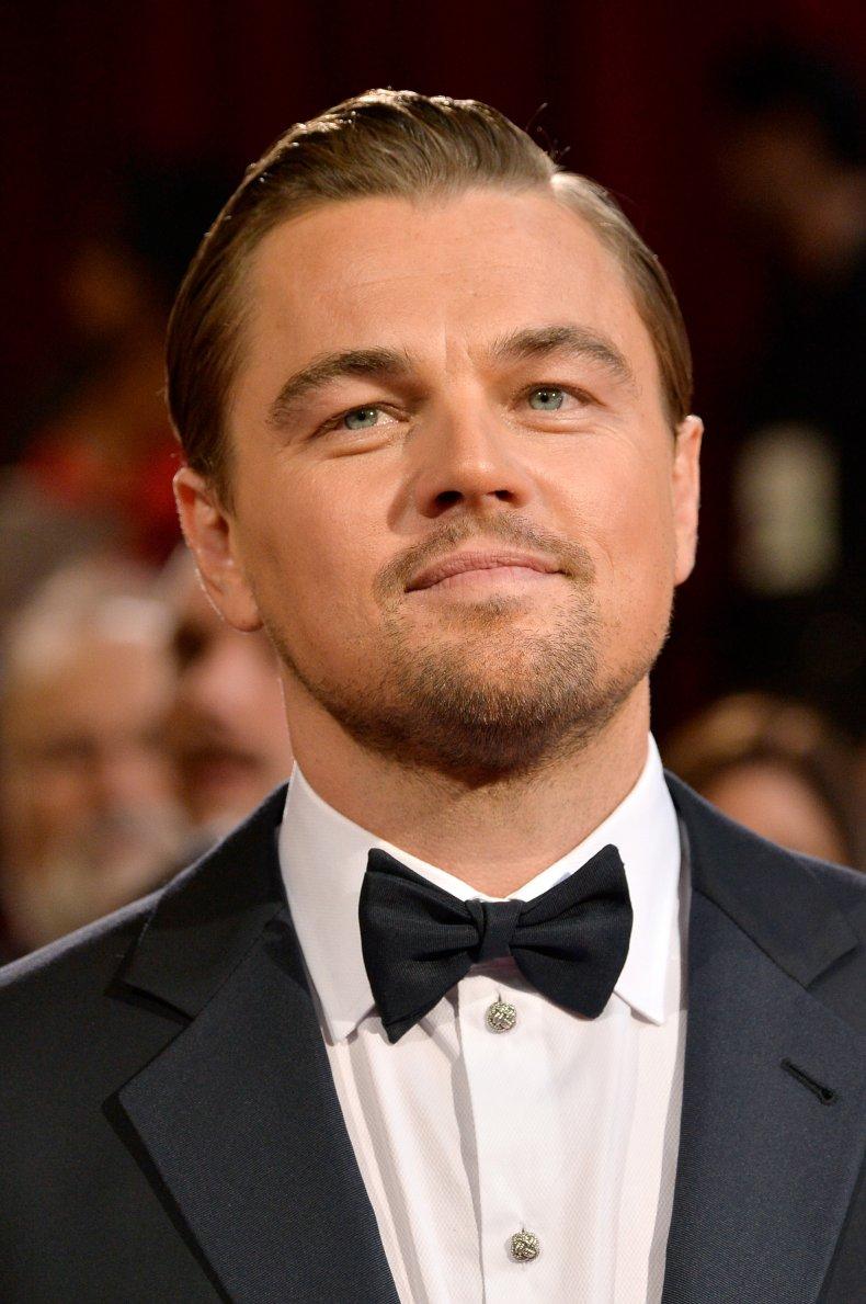 Photo of Leonardo DiCaprio.