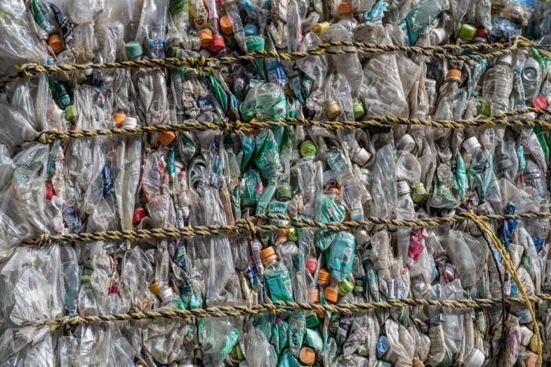 Plastic turned into edible protein