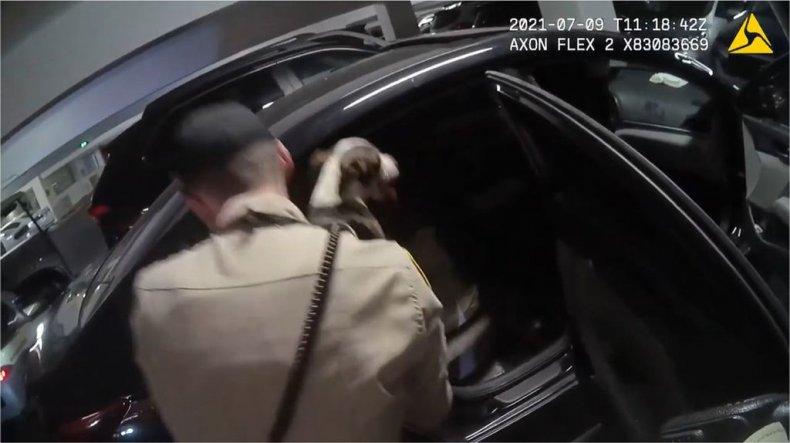 Casino dog rescue
