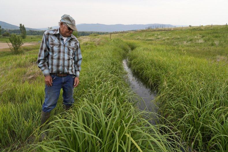 Rancher Observes Drought