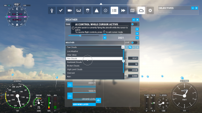 Microsoft Flight Simulator Weather Settings