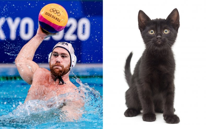 Waterpolo star Alex Bowen and a cat.