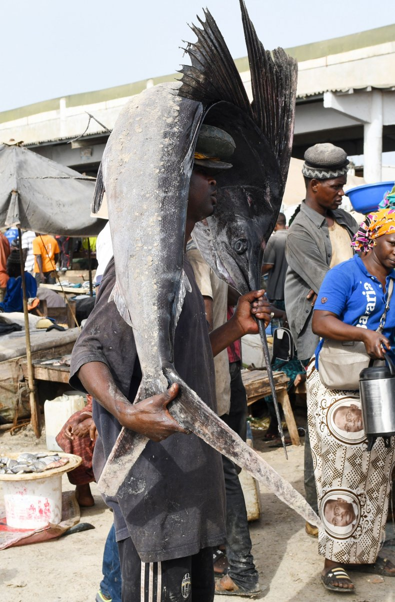 A fish vendor carries a dead swordfish.